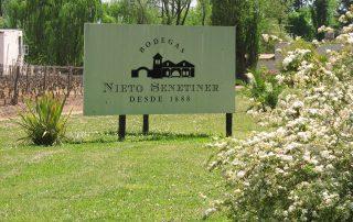 Argentina Mendoza - Bodega Nieto Senetiner - wine region