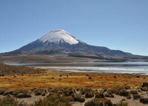 Chili - Parinacota volcano & Chungara Lake