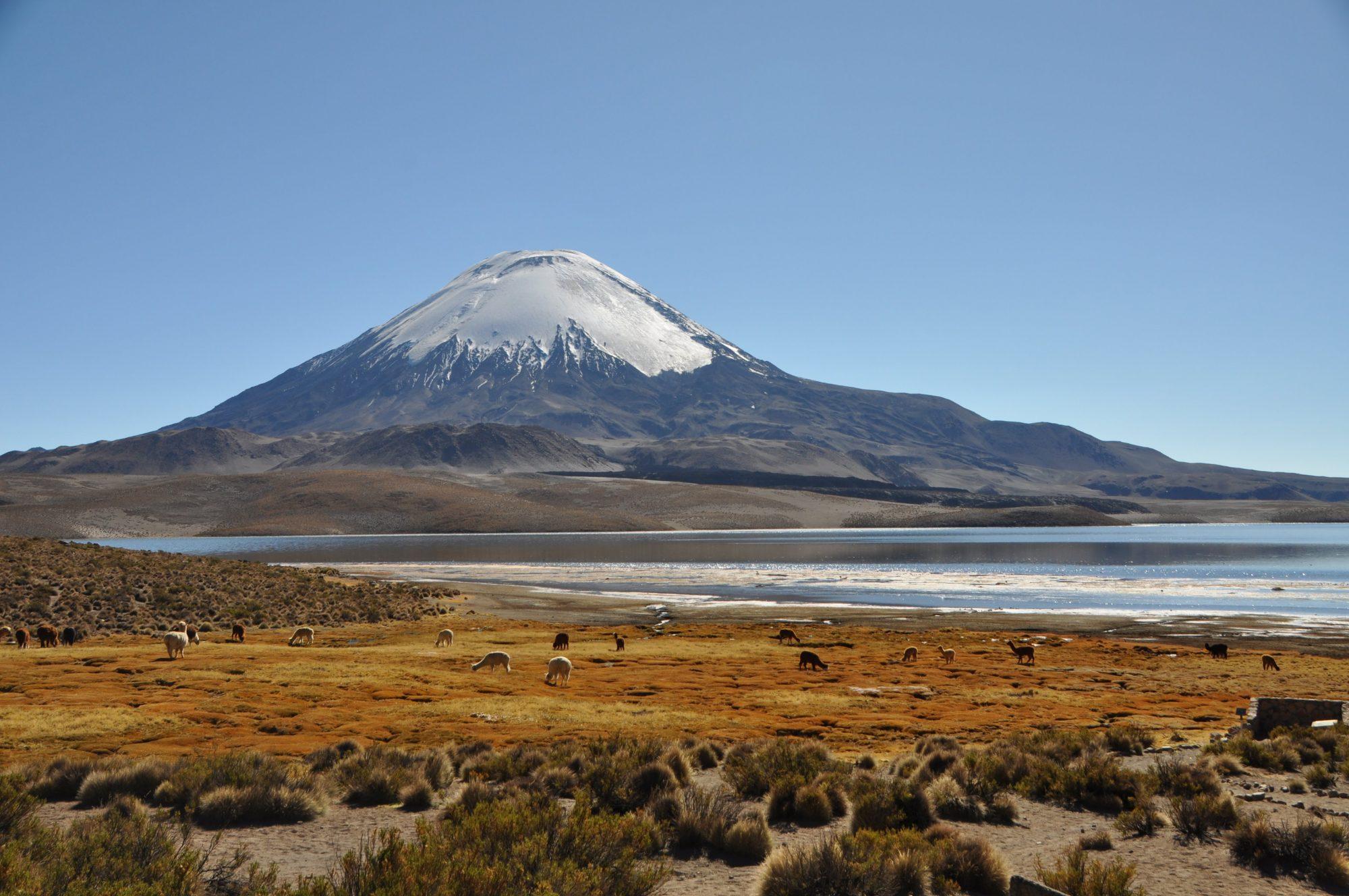 Chile Parinacota volcano