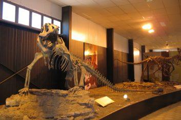 Argentina - Ischigualasto museum