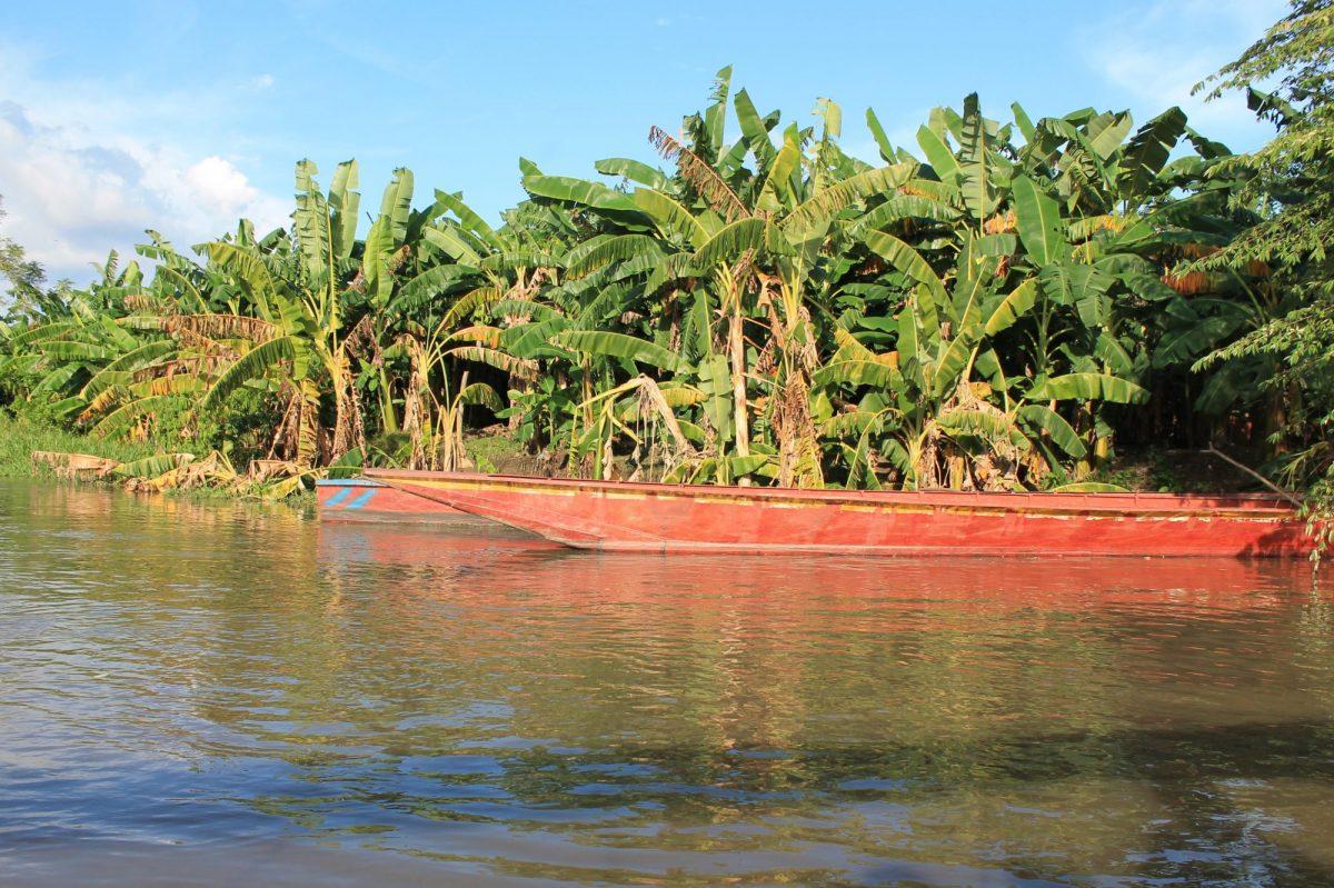 Colombia Mompox boat excursion