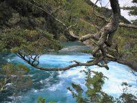 Chili - Petrohue