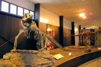 Argentinië Ischigualasto museum - Villa Union