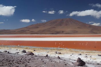 Bolivia Uyuni - Laguna colorada