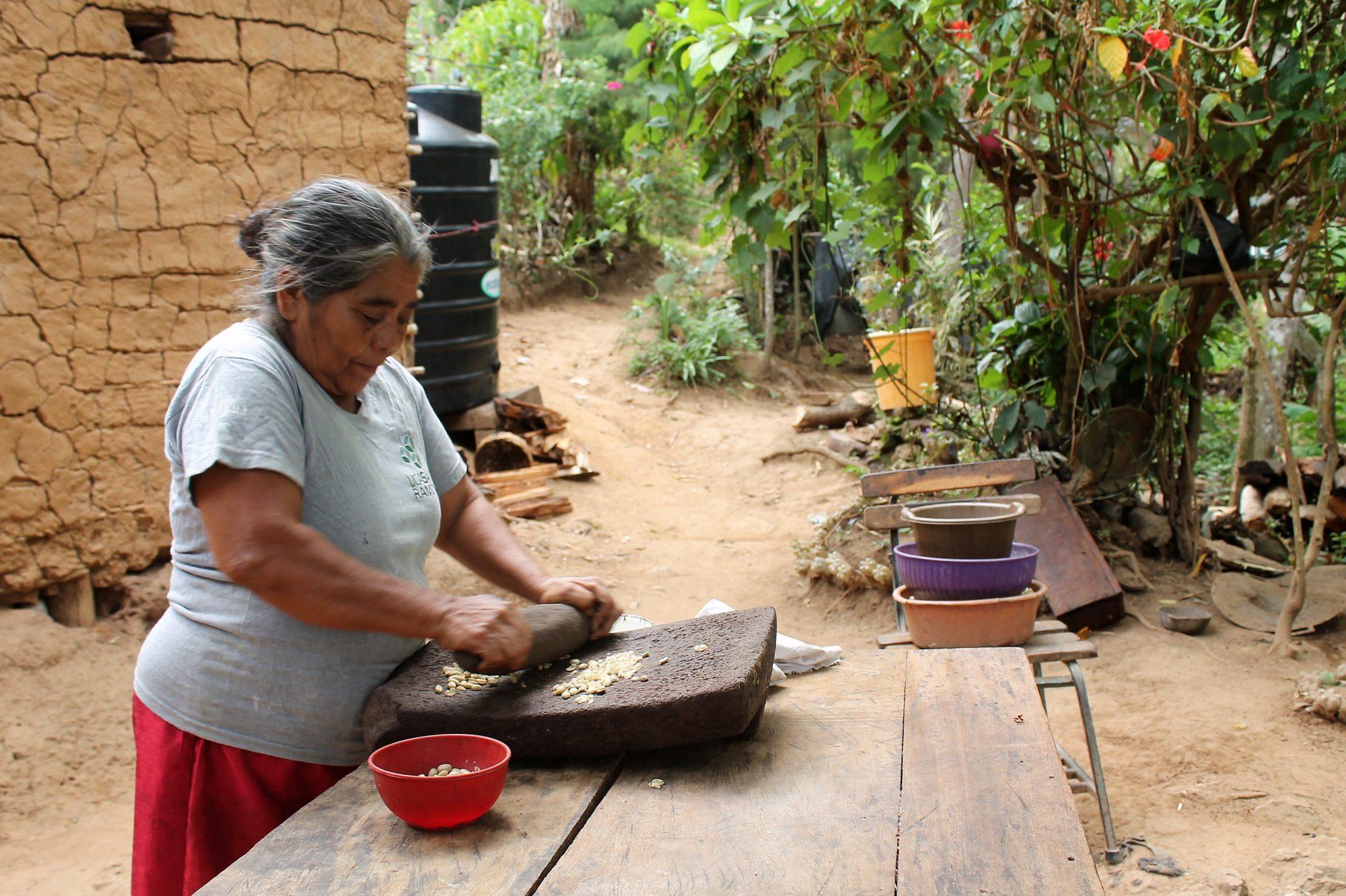 Nicaragua - San Ramon coffee