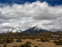 Chile - Noord Putre - NP Lauca - Parinacota & Pomerape