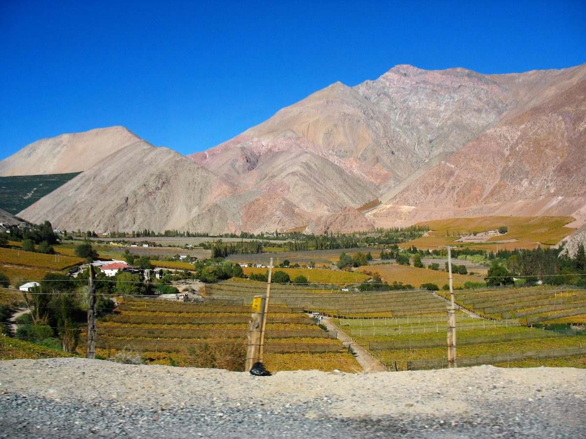 Chili - Norte Chico - Valle Elqui