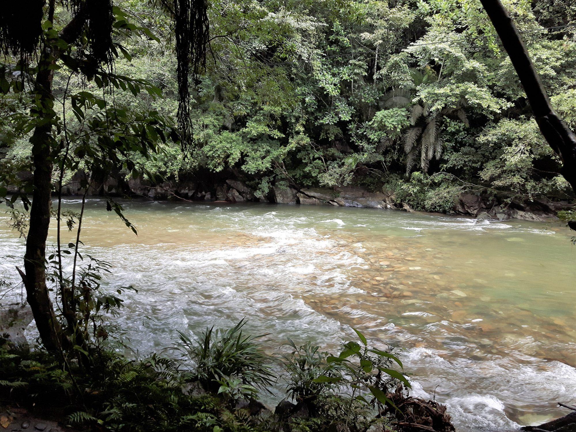 Colombia - Rio Claro