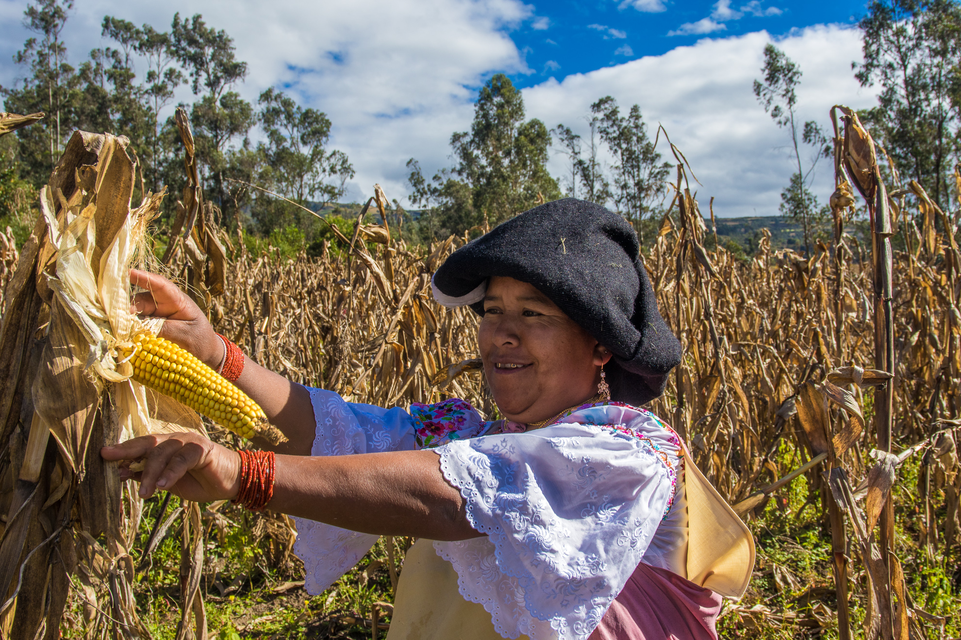 Ecuador - Otavalo area