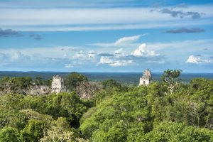 Guatemala_Tikal_Cresterias_Templos_I_II