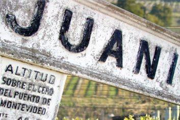 Uruguay - Wijnen - Bodega Juanico